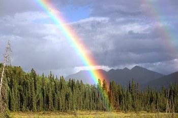 rainbow-436183__340.jpg